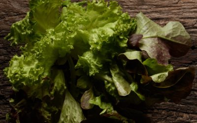 Ist abgepackter Salat noch gesund?